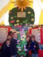 sustainable-living-wishing-tree